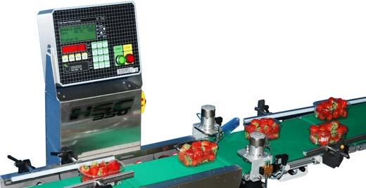 Checkweigher with sorting system